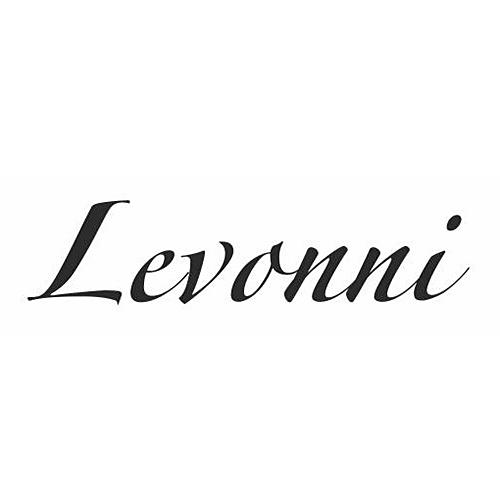 Логотип обувь Levonni